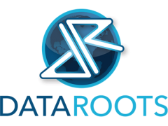 Data Roots Web Design and Development